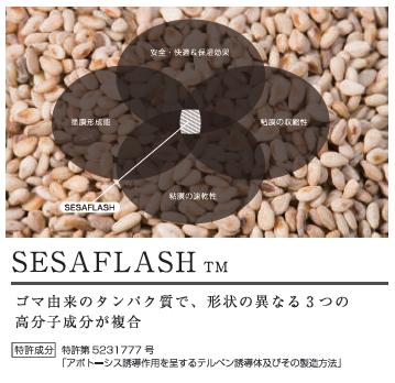 sesaflashはゴマ由来のたんぱく質で、形状の異なる3つの高分子成分が複合